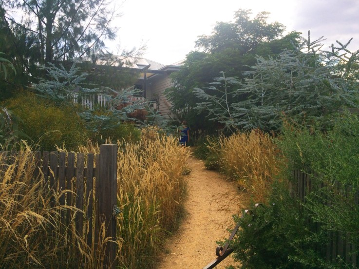 Woodland&garden-path